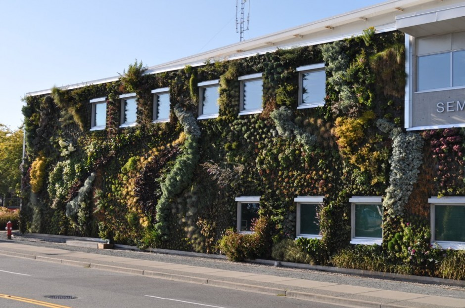 Buildings Sprout Living Walls By Green Over Grey,Courtesy Of Green Over Grey