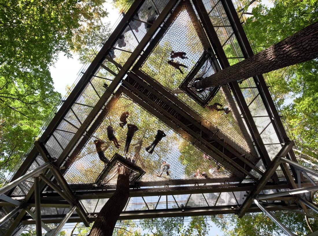 Gallery of morris arboretum tree adventure metcalfe for Architecture and design tree house