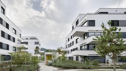 Complejo Residencial Sonnenhof / Fischer Architekten