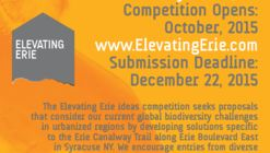 Elevating Erie: Ideas Competition for a Biodiverse Boulevard