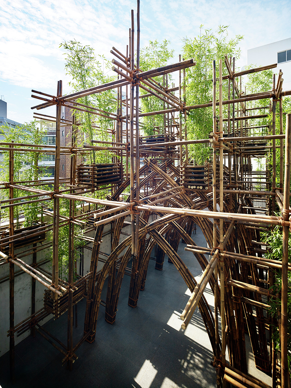 Bamboo Forest Vtn Architects Archdaily