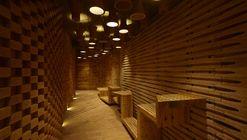 Home Theatre Studio Interior / Sfurna Designs