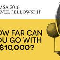 CALL FOR APPLICATIONS: RAMSA 2016 TRAVEL FELLOWSHIP