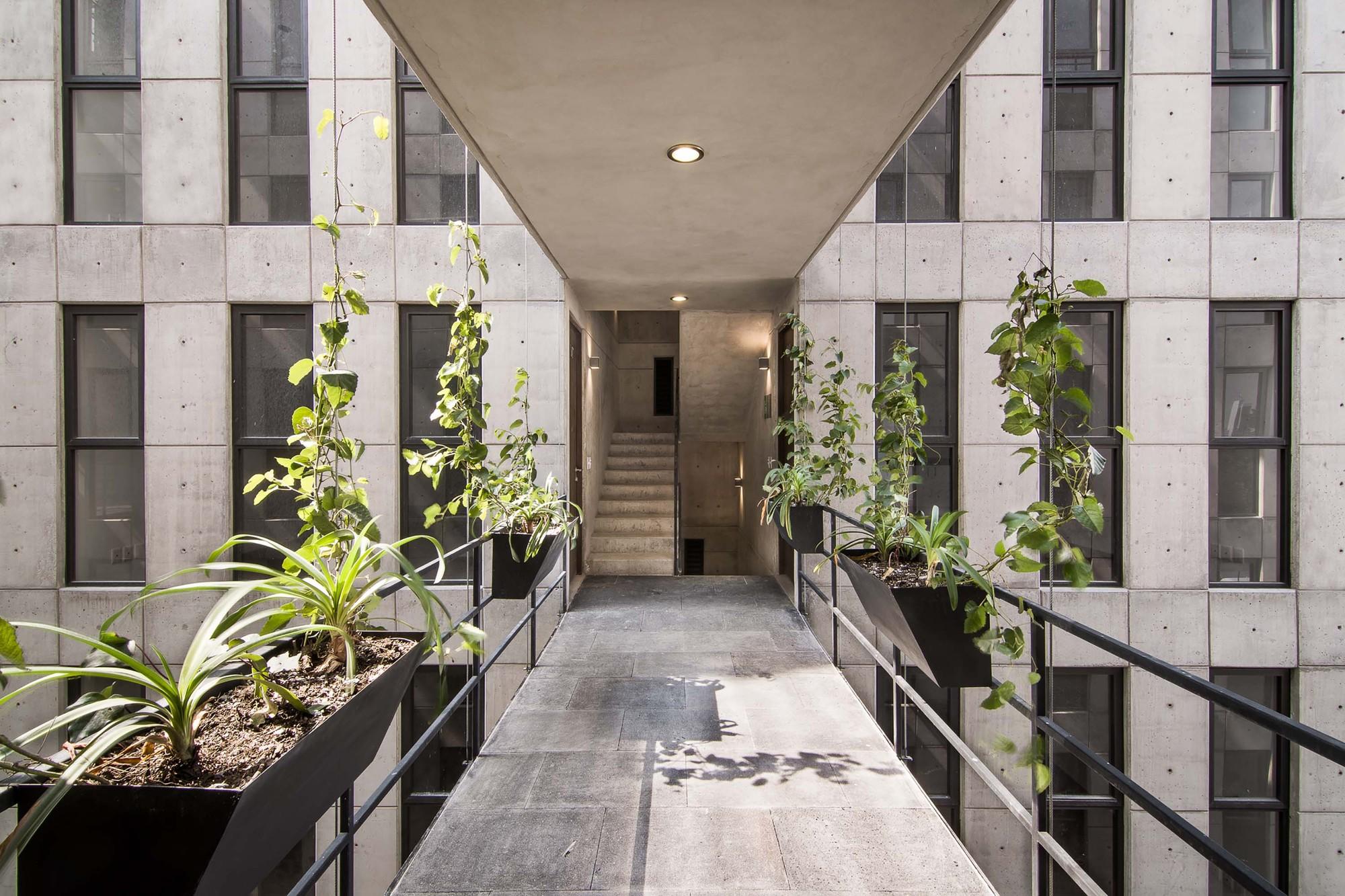 Popocatepetl 143 / HGR Arquitectos