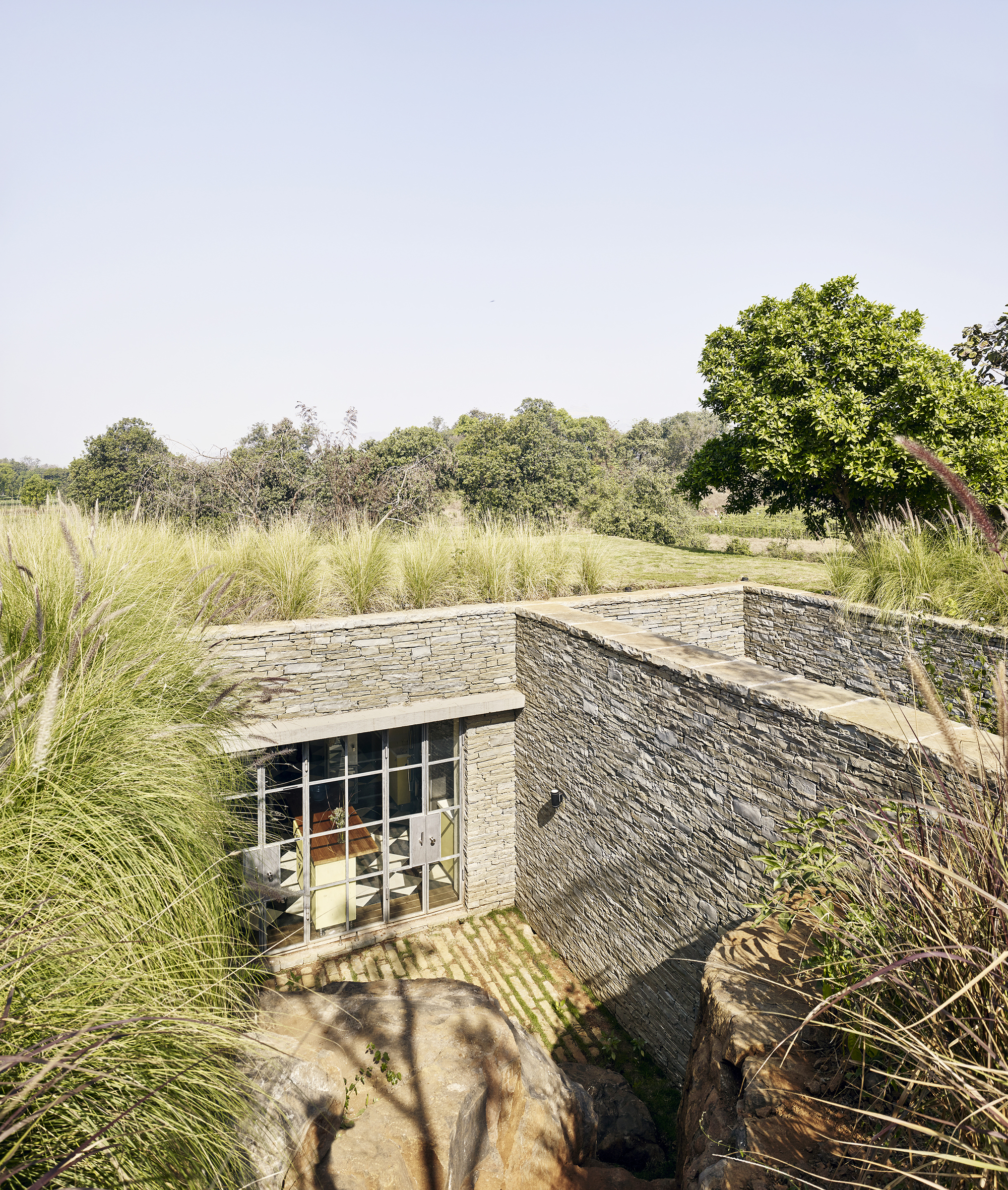 the riparian house architecture brio archdaily