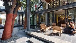 The Mango Tree House / Ujjval Panchal + Kinny Soni