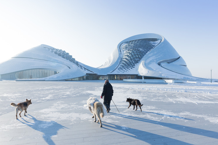 Iwan Baan's Photographs of the Harbin Opera House in Winter , © Iwan Baan