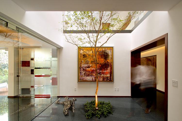 Casa bajo el rbol agraz arquitectos archdaily per for Arbol interior