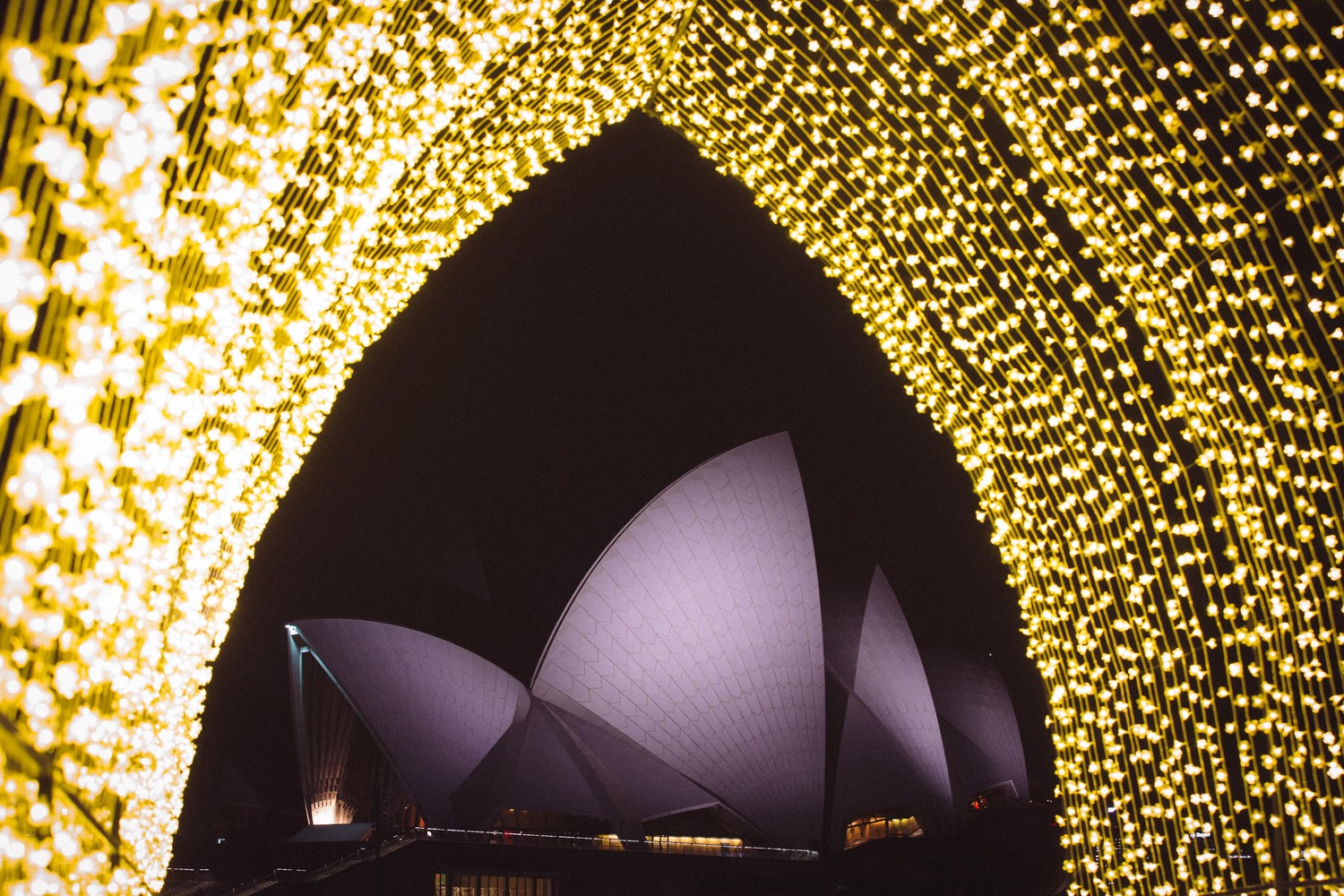 Sydney Makes A Light Show Of The City S Harbour And Beyond Cathedral