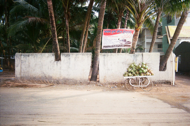 Works of India, Wall and palm trees, Murud, India, 2014 - Courtesy Works of India, Fabio Baldo and Tiago Atalaia