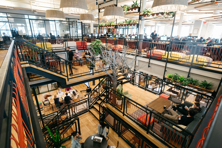 "How WeWork Experiments On Itself to Advance the Field of Office Design, The potted plants, images of trees on the giant light fixtures from Alex Allen Studio, and even a show tree help people make a connection to nature at work, which creative director Devin Vermeulen says is ""proven to make people more creative, less stressed"". Image © Lauren Kallen"