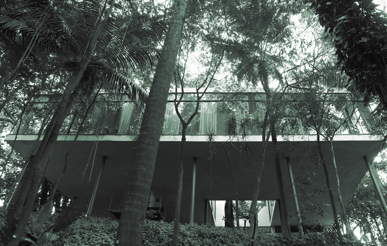Veronika kellndorfer tropical modernism lina bo bardi veronika kellndorfer tree house