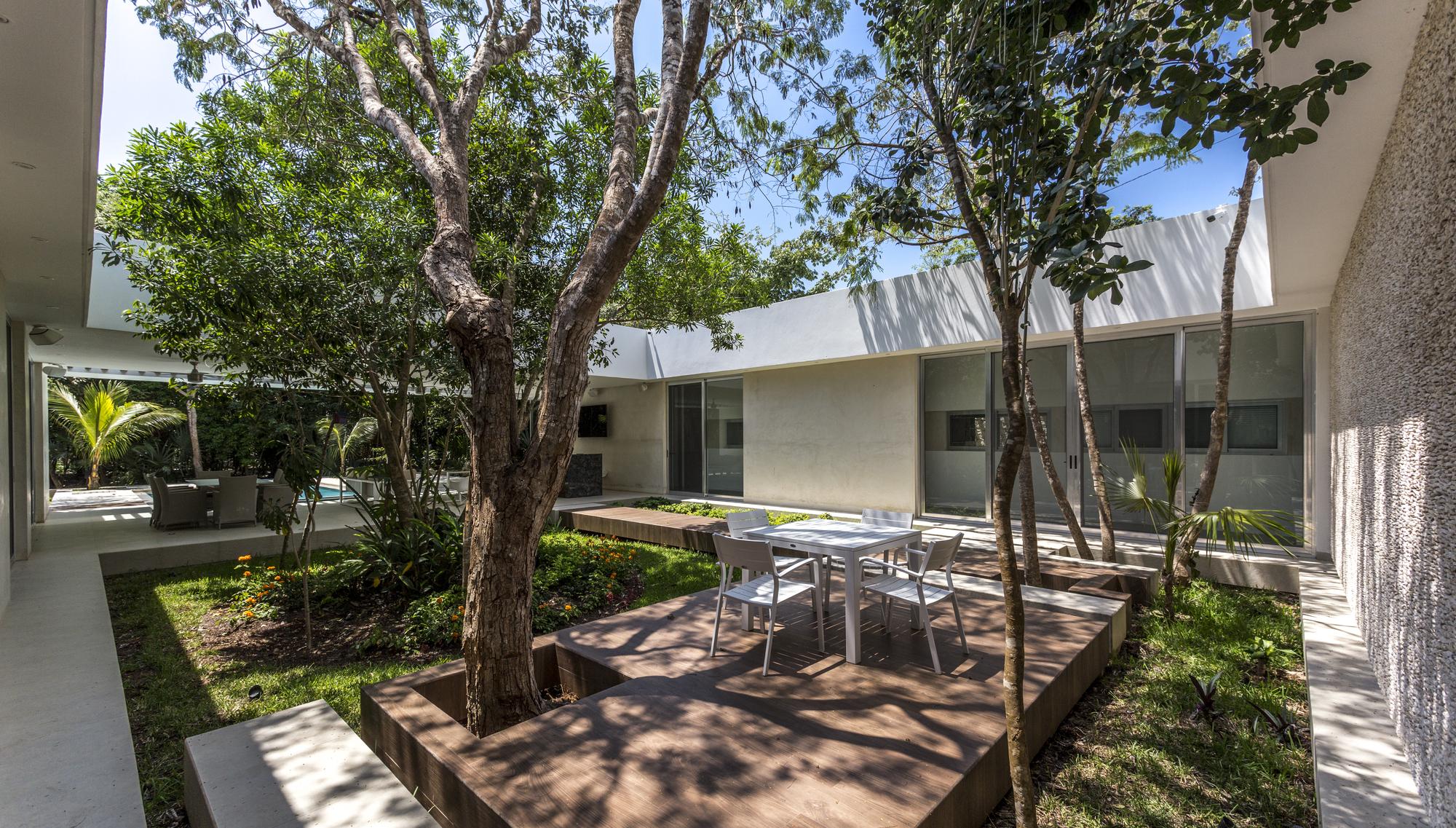 Galer a de casa entre rboles as arquitectura 4 for Arboles para interior casa