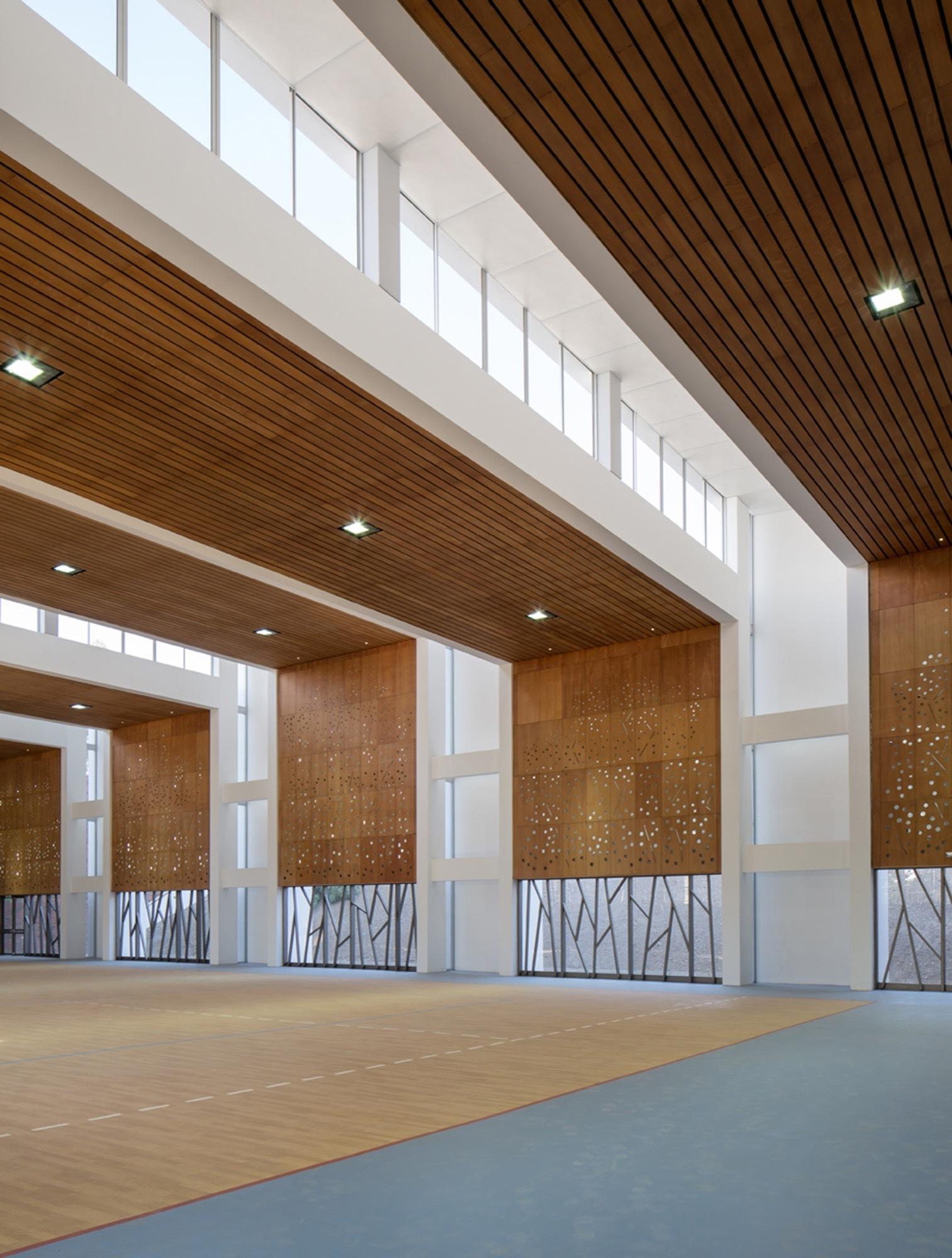 Gallery of dunalastair school gymnasium patricio schmidt for Schule design
