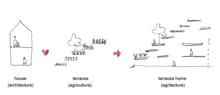 Terraces home h p architects archdaily for Terrace farming diagram