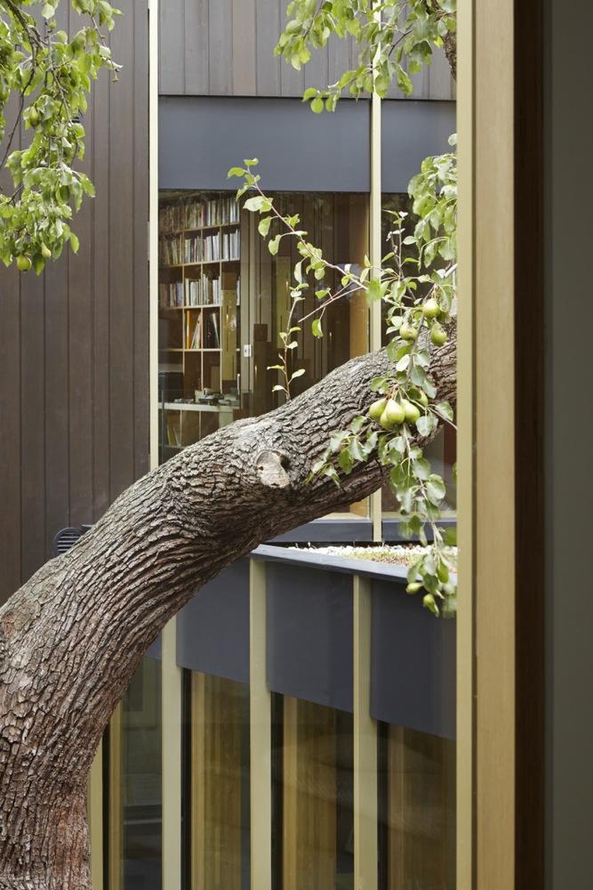 Gallery of Pear Tree House / Edgley Design - 13 on park slides, tree houses for girls, office slides, wood slides, tree houses for adults, roller bearing slides, easter slides, tree themed playgrounds,