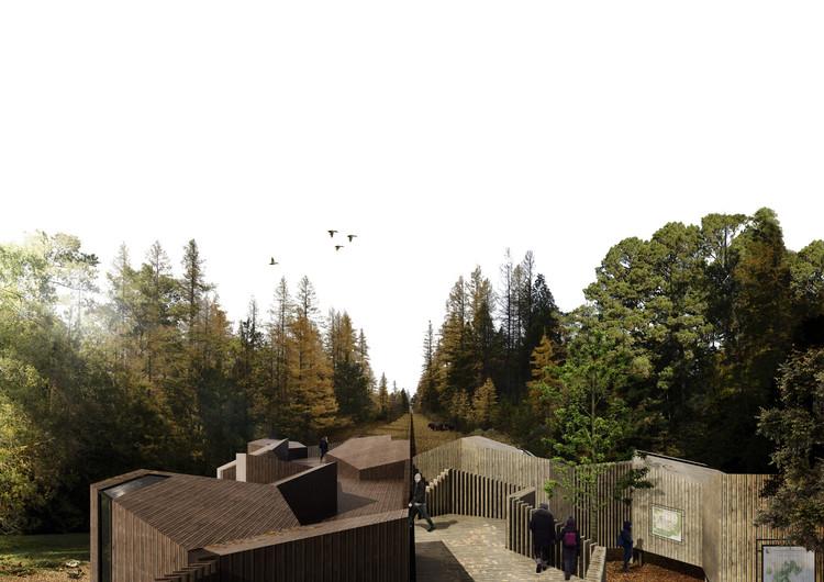 Estudantes propõem centro de interpretação na floresta de Bialowieża, Cortesia de Alicia Cano, María Escribano, Rocío Gómez, Diego Jesús García