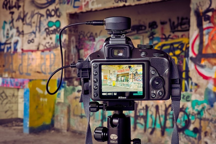 Take Harvards Online Course in Digital Photography for Free