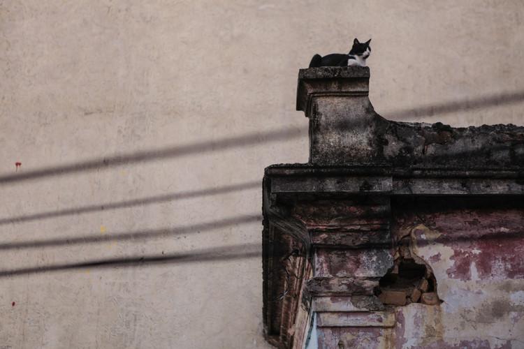 """O Morar como Patrimônio: percursos paulistanos dos séculos XIX e XX, Curso """"O morar como patrimônio"""""""