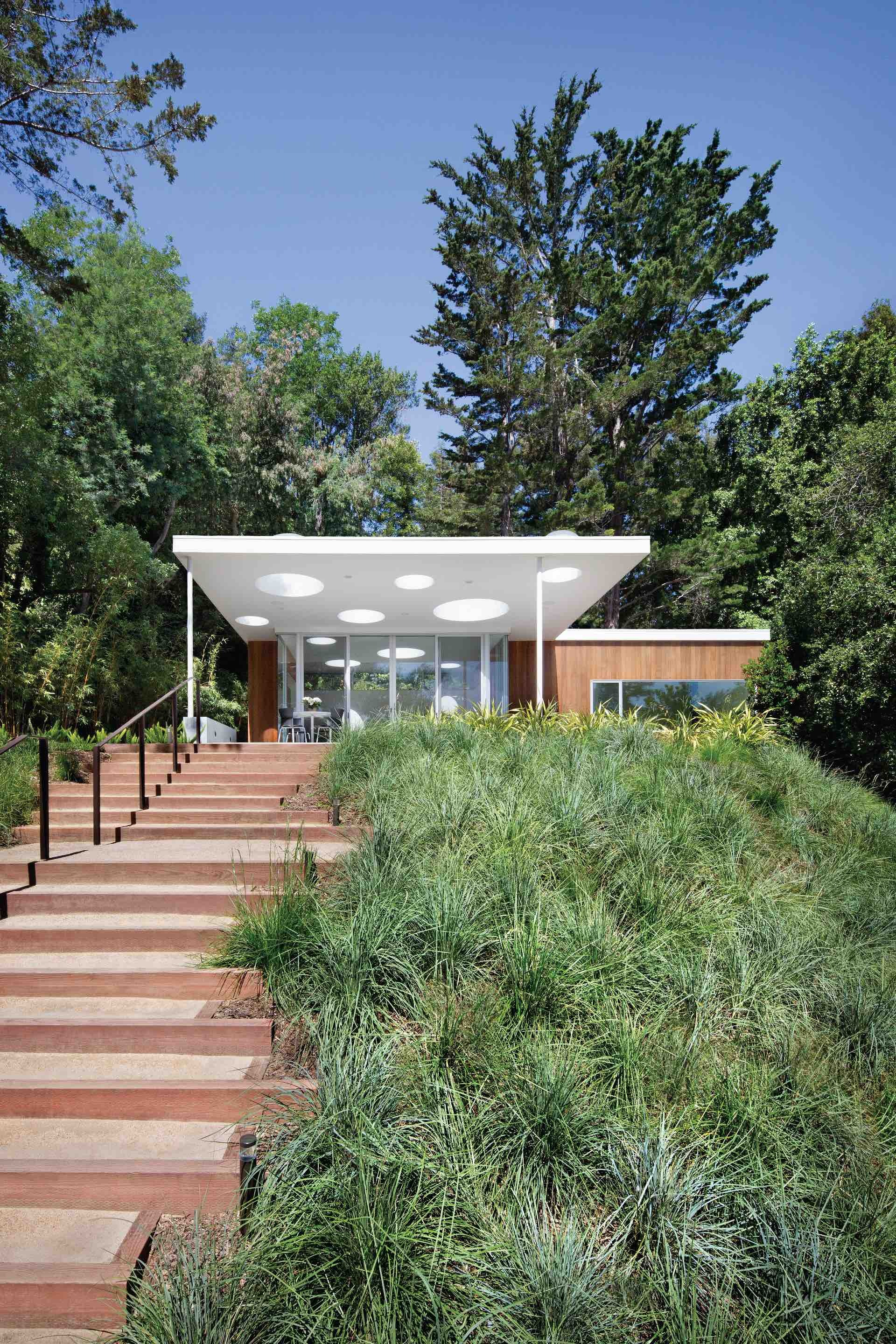Gallery of mill valley guesthouse turnbull griffin for Mill valley architects