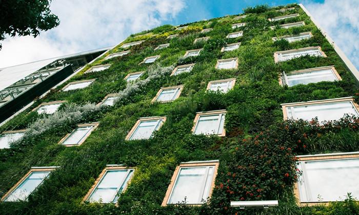 Edición 2017 del curso profesional de diseño y construcción de jardines verticales en Santiago, Jardín Vertical más grande del mundo - Sistema Paisajismo Urbano