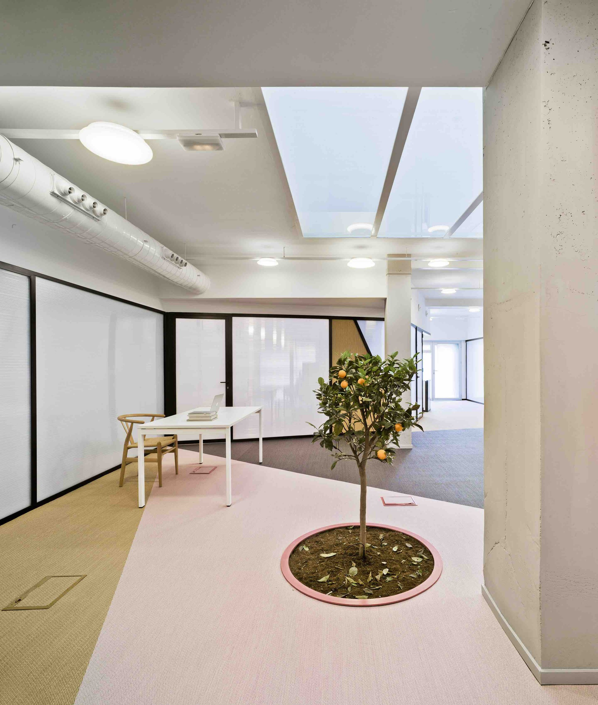 Oficinas LANO FRUITS / Laura Ortín