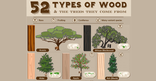 what type of wood is best for kitchen cabinets 52 types of wood and the trees they come from archdaily 28374