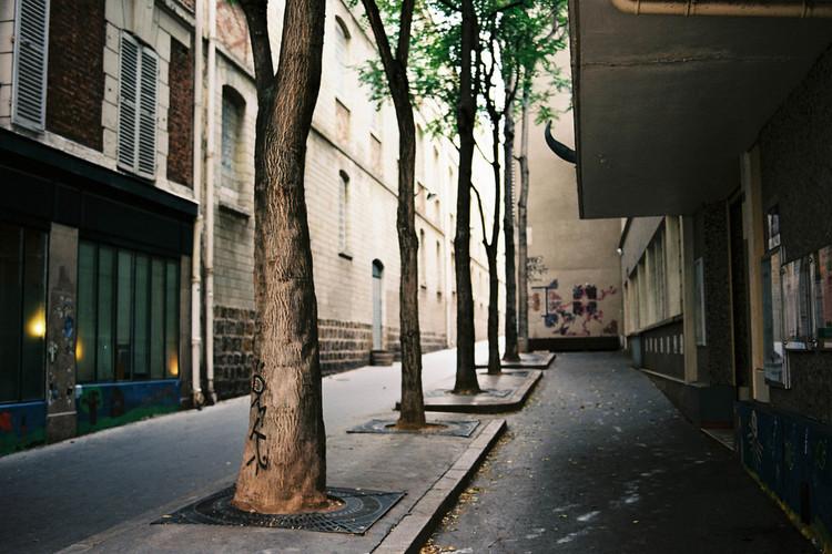 25 Espécies de árvore que você pode plantar sem receio de destruir sua calçada, © Amelien (Fr) via VisualHunt.com /  CC BY-NC