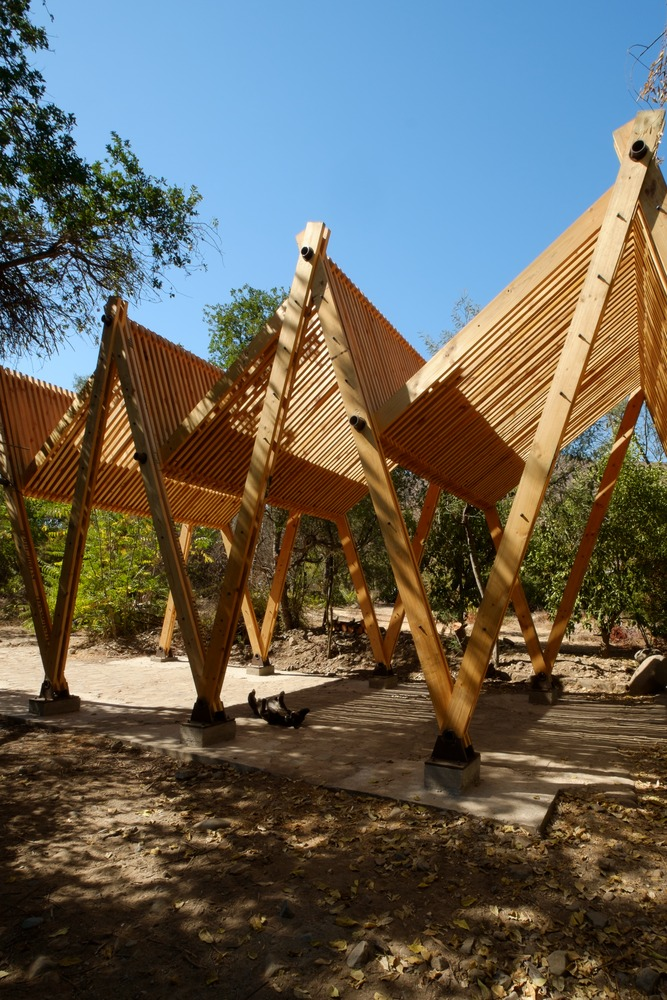 Continuity of Structure Defines this Timber Canopy in Chile© Tomás Weisser & Gallery of Continuity of Structure Defines this Timber Canopy in ...