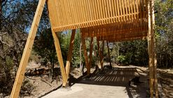 Continuity of Structure Defines this Timber Canopy in Chile