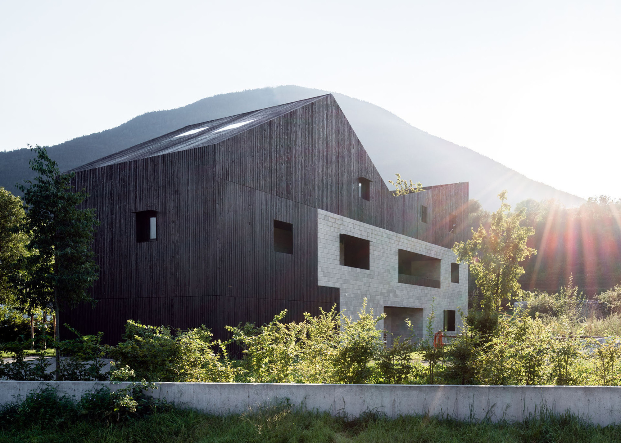 Rooftops Twin House H / bergmeisterwolf architekten