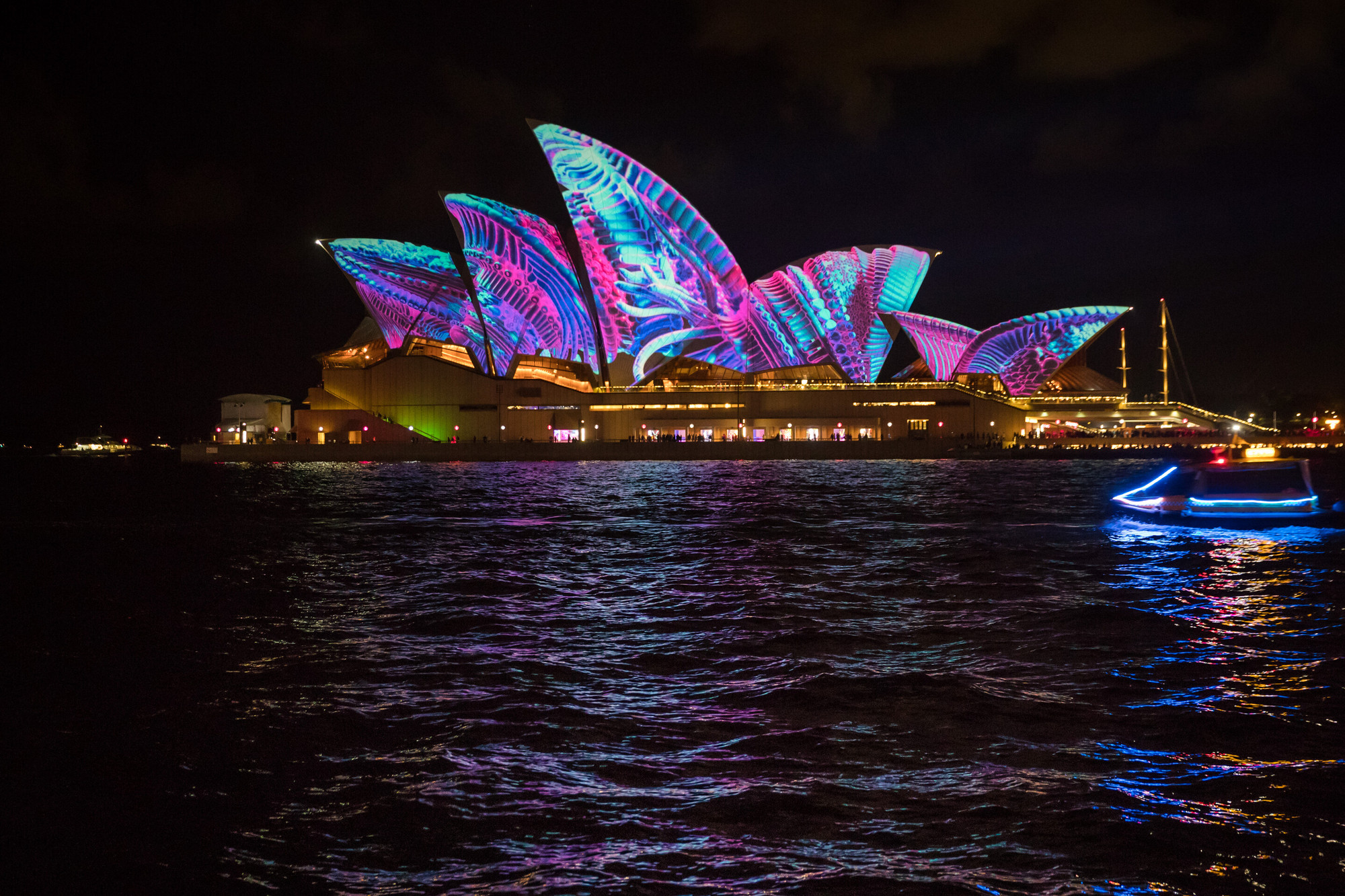 Gallery of The Sydney Opera House Comes to Life (Literally ...