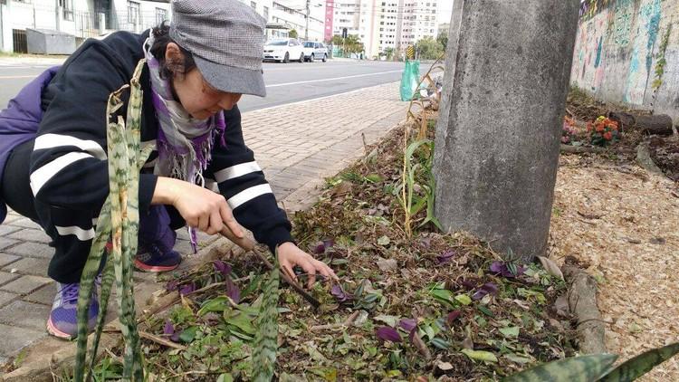 Curitiba libera cultivo de hortas nas calçadas e vai regulamentar a prática, © Horta Comunitária de Calçada Cristo Rei, via CicloVivo