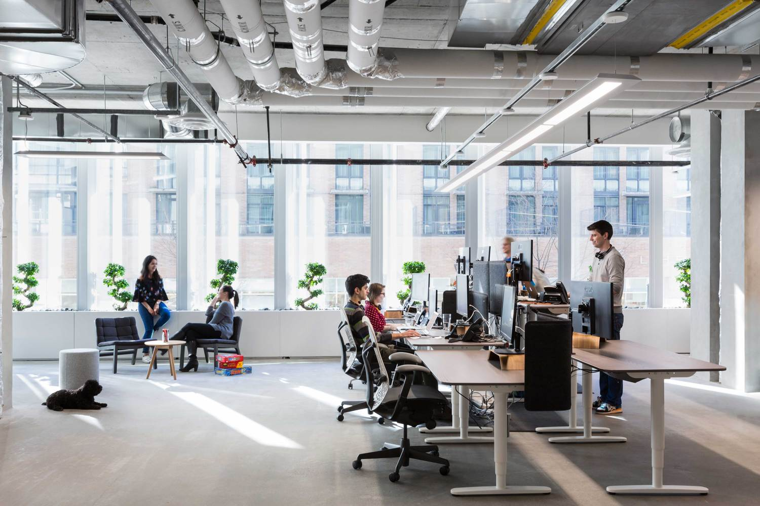 Gallery of Bench Accounting Office Interiors / Perkins+Will - 13
