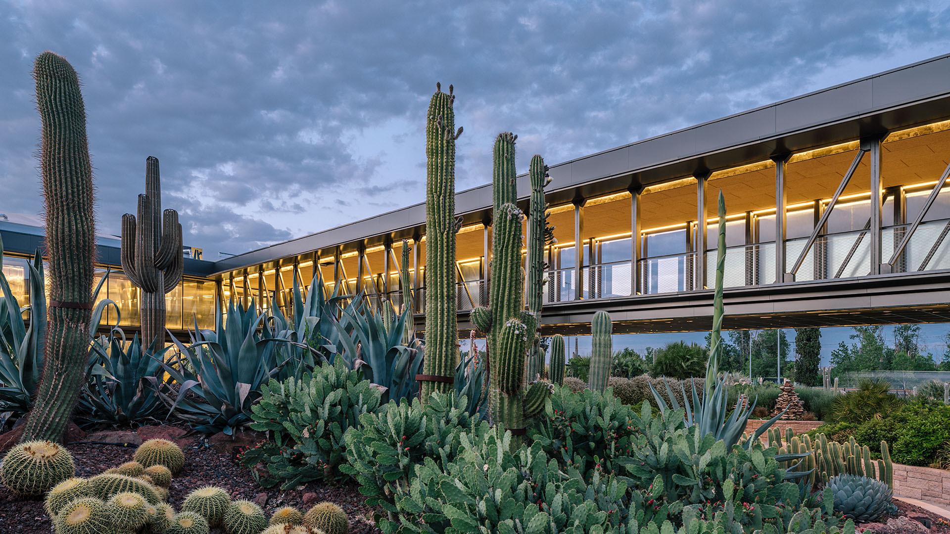 Desert city garciagerman arquitectos archdaily - Arquitectos de interiores famosos ...