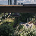 """ALBERTO KALACH: """"IMAGINE IF ALL ROOFTOPS IN OUR CITY WERE GREEN!"""""""