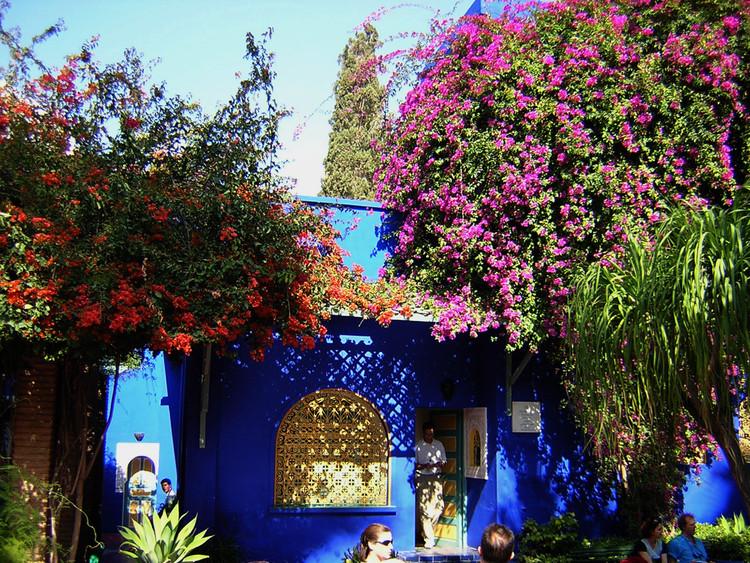 La Vibracion De Colores Del Jardin Majorelle En Marrakech