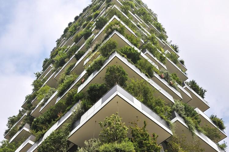 Floresta vertical pode ser uma solução para a poluição atmosférica nas cidades, Cortesia de Paolo Rosselli