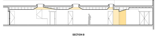 Section B