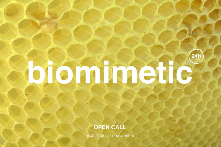 biomimetic: convocatoria abierta para concurso de ideas 24h competition, ideasforward