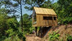 Forest House / Chu Văn Đông