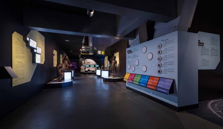 Indissoluble y ZFC Arquitectos diseñan una exposición que crea experiencias sobre el conocimiento del cerebro, © indissoluble