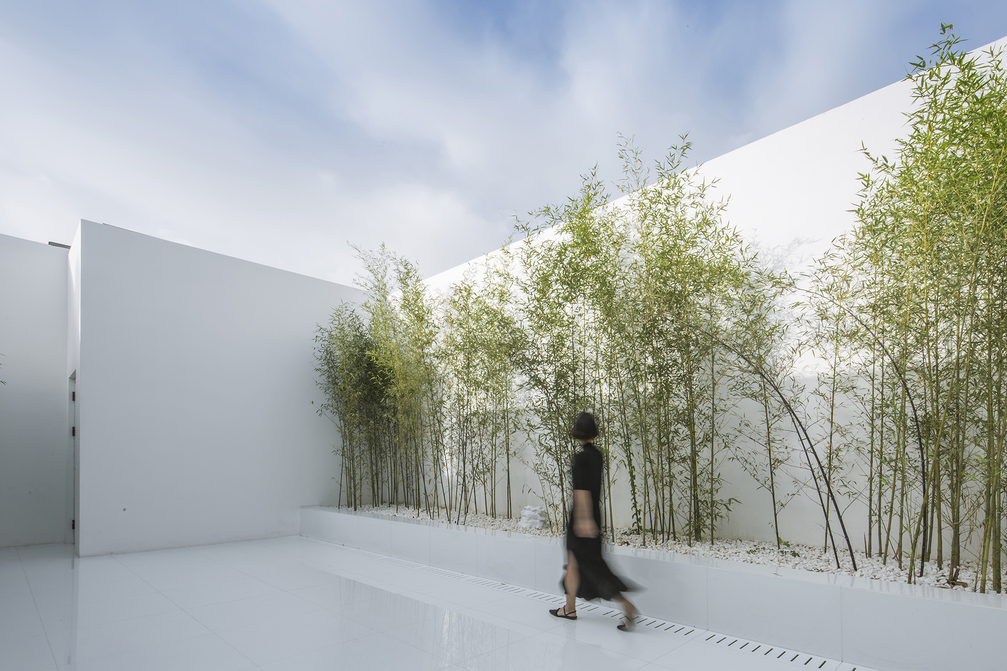 Bamboo Forest On The Roof V Studio Archdaily