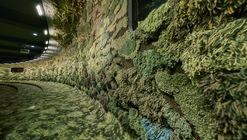Auditorio diseñado por MVRDV está tapizado de alfombras absorbentes, inspiradas por el musgo