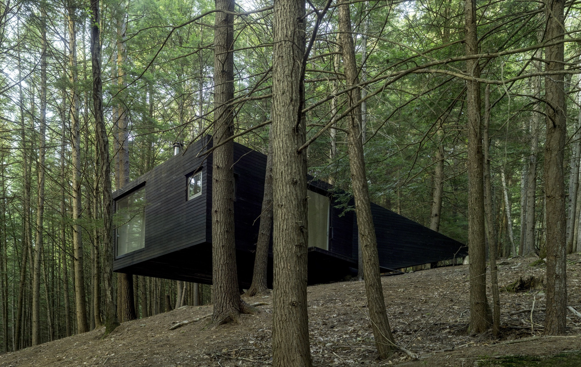 Half-Tree House / Jacobschang Architecture