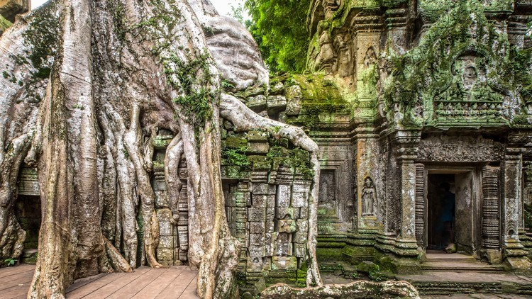 Forgotten Kingdoms of Cambodia Tour with Architectural Adventures, Ta Prohm | courtesy of Adobe Stock