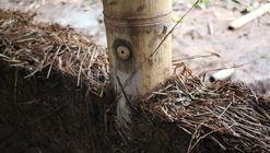 Cómo (y por qué) integrar tierra y bambú en un proyecto de arquitectura