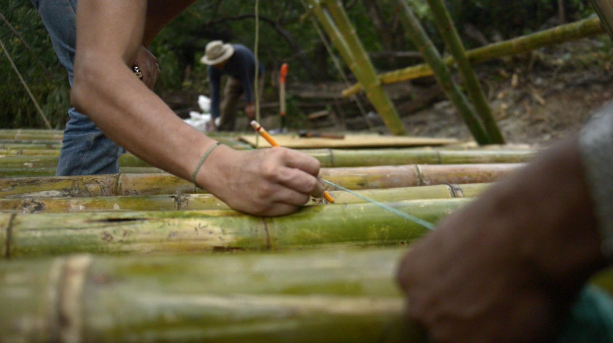 Bio Reconstruye M Xico Busca Crear Una Arquitectura Para La Vida  # Muebles Ricaldi