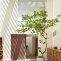 HOUSE IN ISHIKIRI / FUJIWARAMURO ARCHITECTS