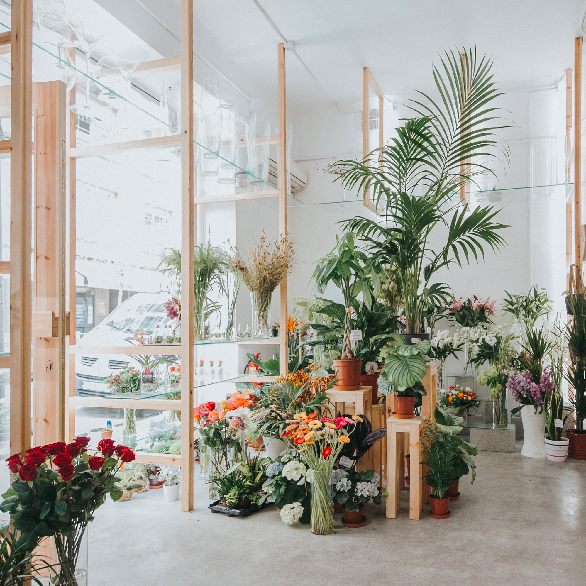Flower Design Shop: Orchids And Ladders / SERRANO+BAQUERO Arquitectos